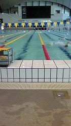 辰巳国際水泳場で大会スタッフ