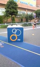 日本選手権2010