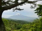 6.2 富士忍野高原トレイルレース
